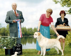 One of Sage's specialty wins, this one is under respected international all-breed judge R. W. (Bill) Taylor. Sage was 6 at the time this photo was taken.